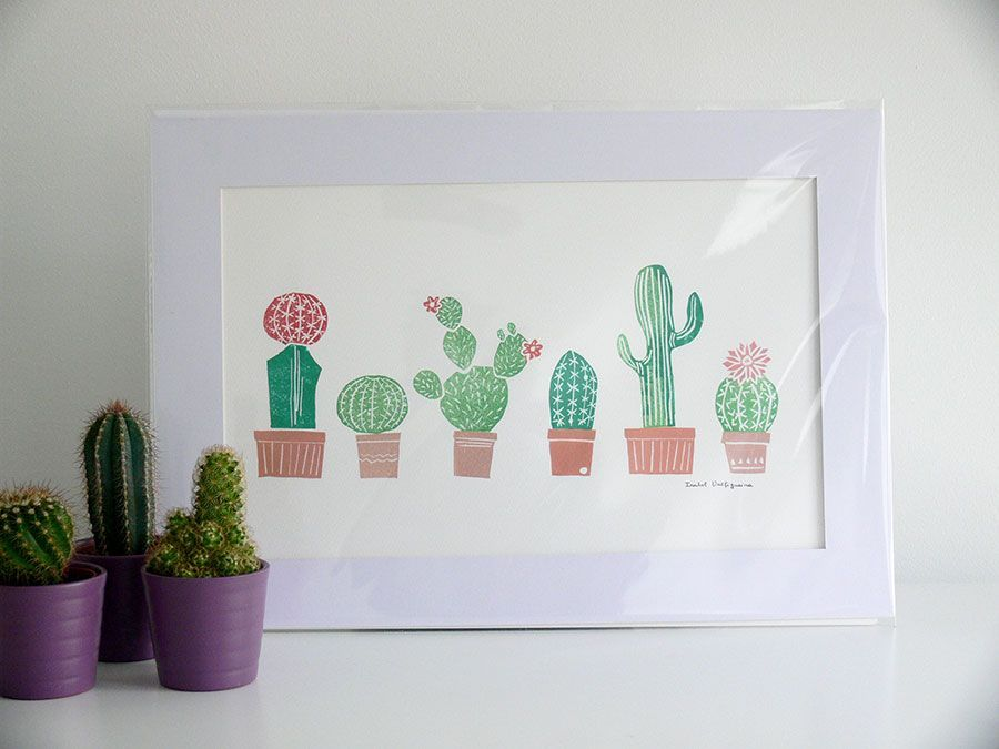 Cactaceae via Arabesco. Click on the image to see more!