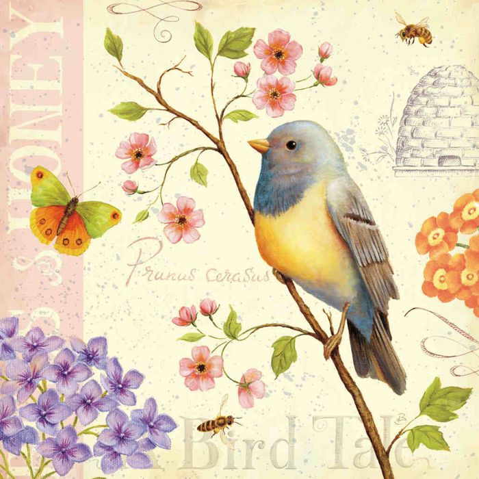 Beautiful printable for decoupage #bird #lovely