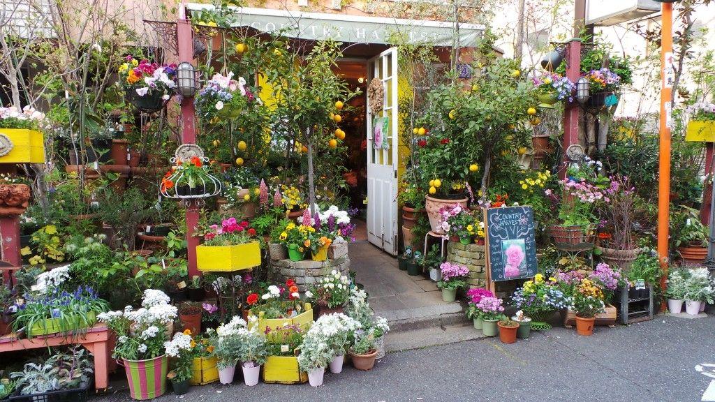 Image result for Gigi Verde flower shop, Kōbe, Japan