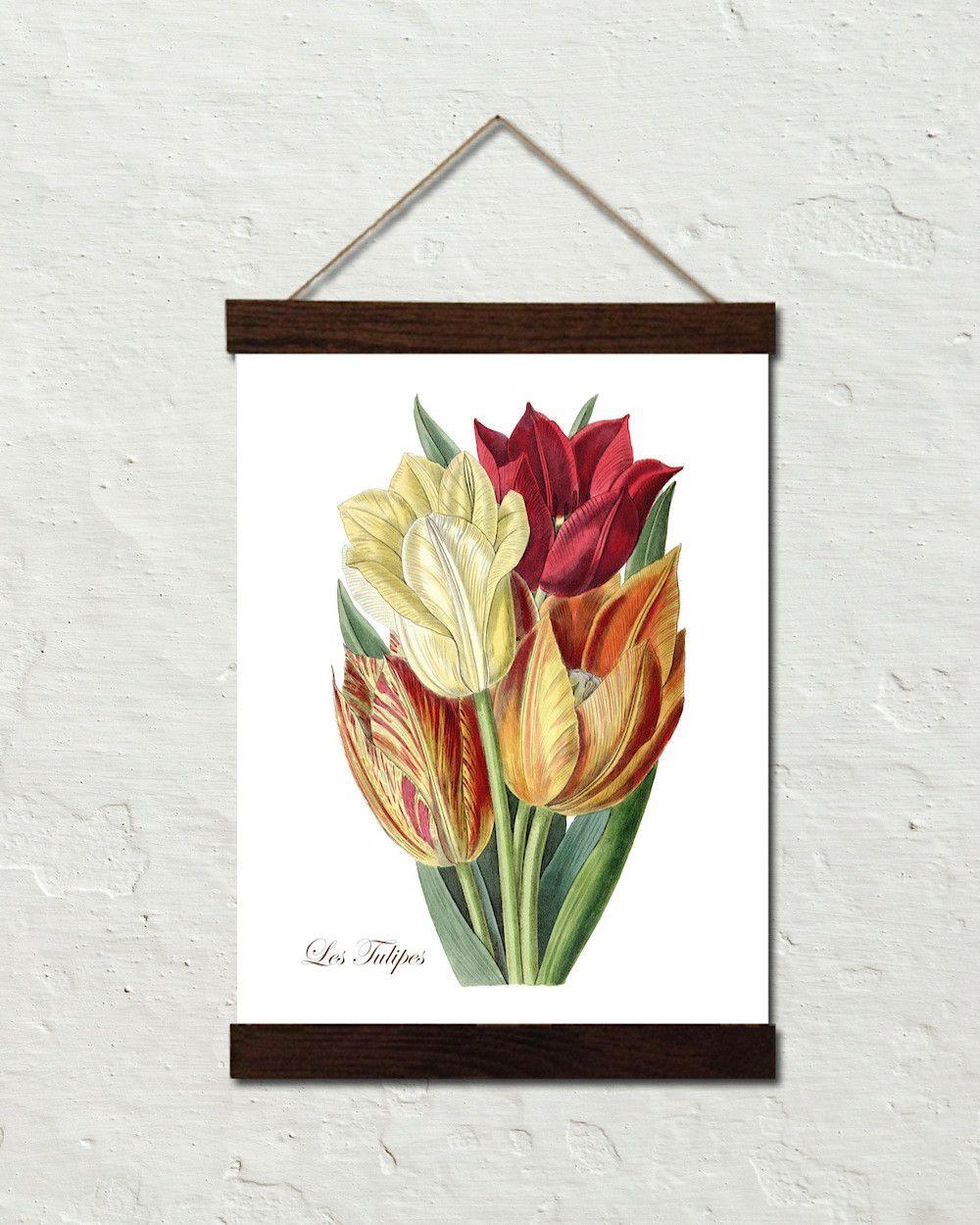 Vintage Tulips No. 40 Botanical Art Canvas Wall Hanging