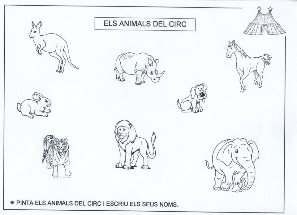 Animales Del Circo Circo Circo Para Ninos Payasos