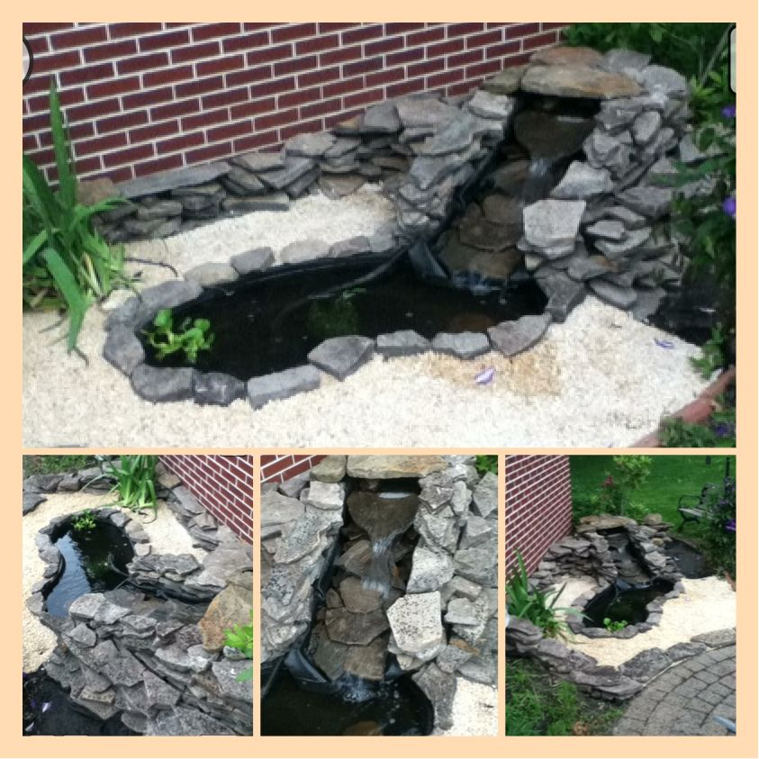 Small garden fish pond with waterfall background Outdoor pond fish for sale