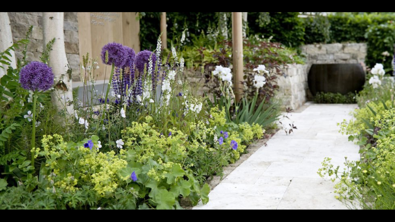 Beetgestaltung Modern pin by fay ewbank on garden ideas garden ideas and gardens