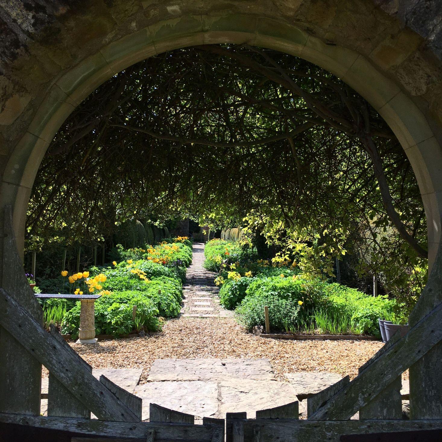 Garden Remodel A Landscape In Progress On The Coast Of Scotland Gardenista Outdoor Gardens Garden Arches Hedges