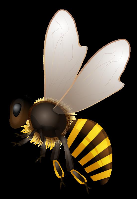 abeilles - Page 8 | Abeille art, Abeille dessin, Illustration d'abeille