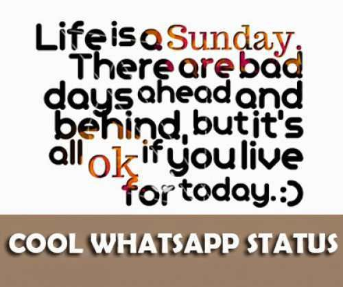 Cool Whatsapp Status In Hindi Daily Inspiration Quotes
