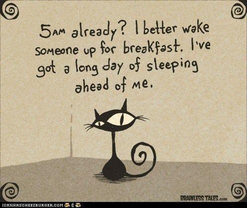 Who Needs an Alarm Clock?  Or a Good Night's Sleep?