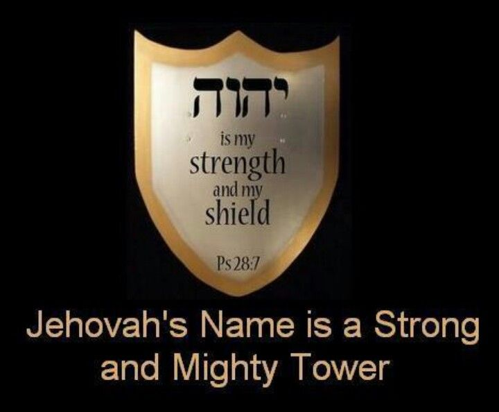 Jehovah is my strength and my shield. - Psalms 28:7