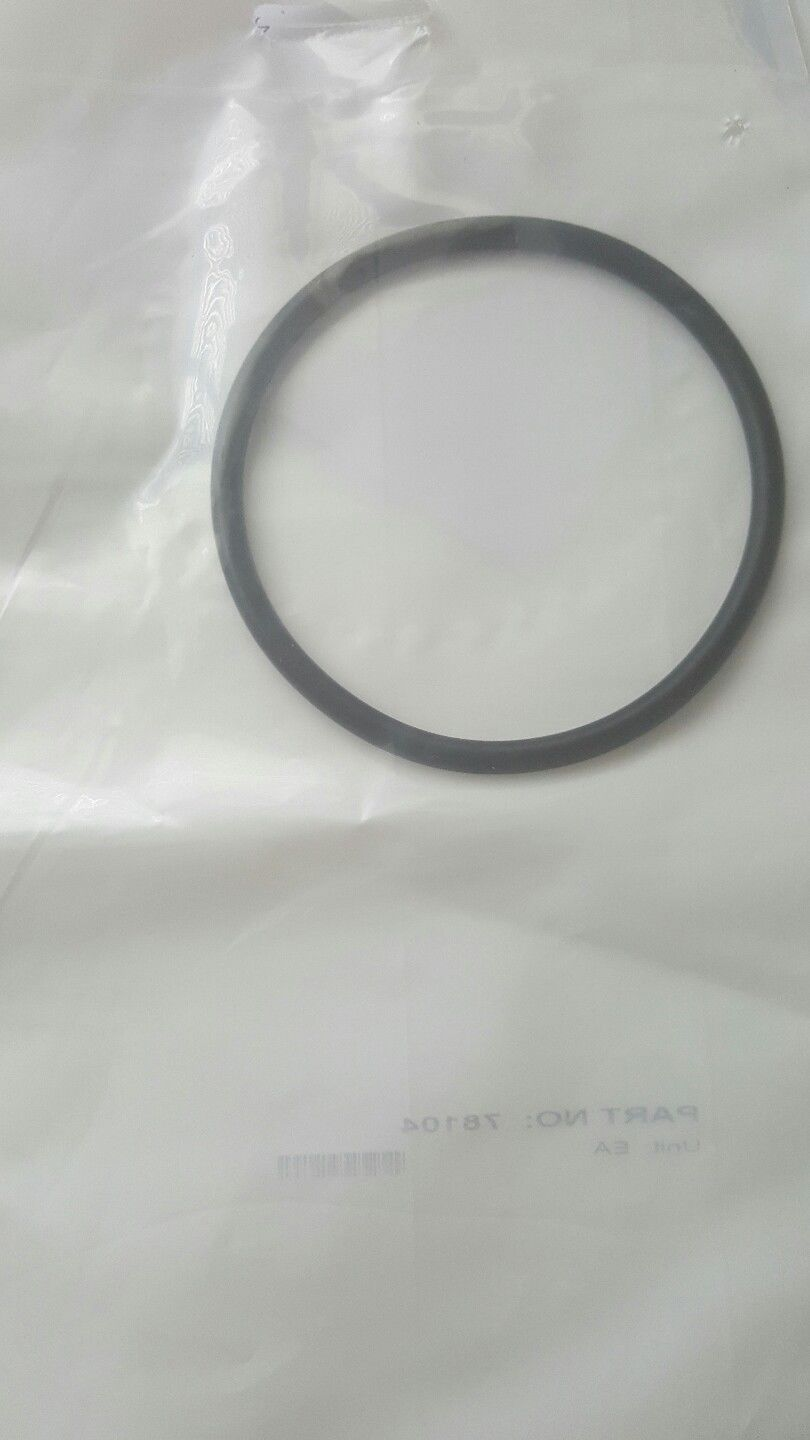 Astral Piscinas 9 9 Aud Genuine Astral Hurlcon O Ring For Vx Salt Chlorinator