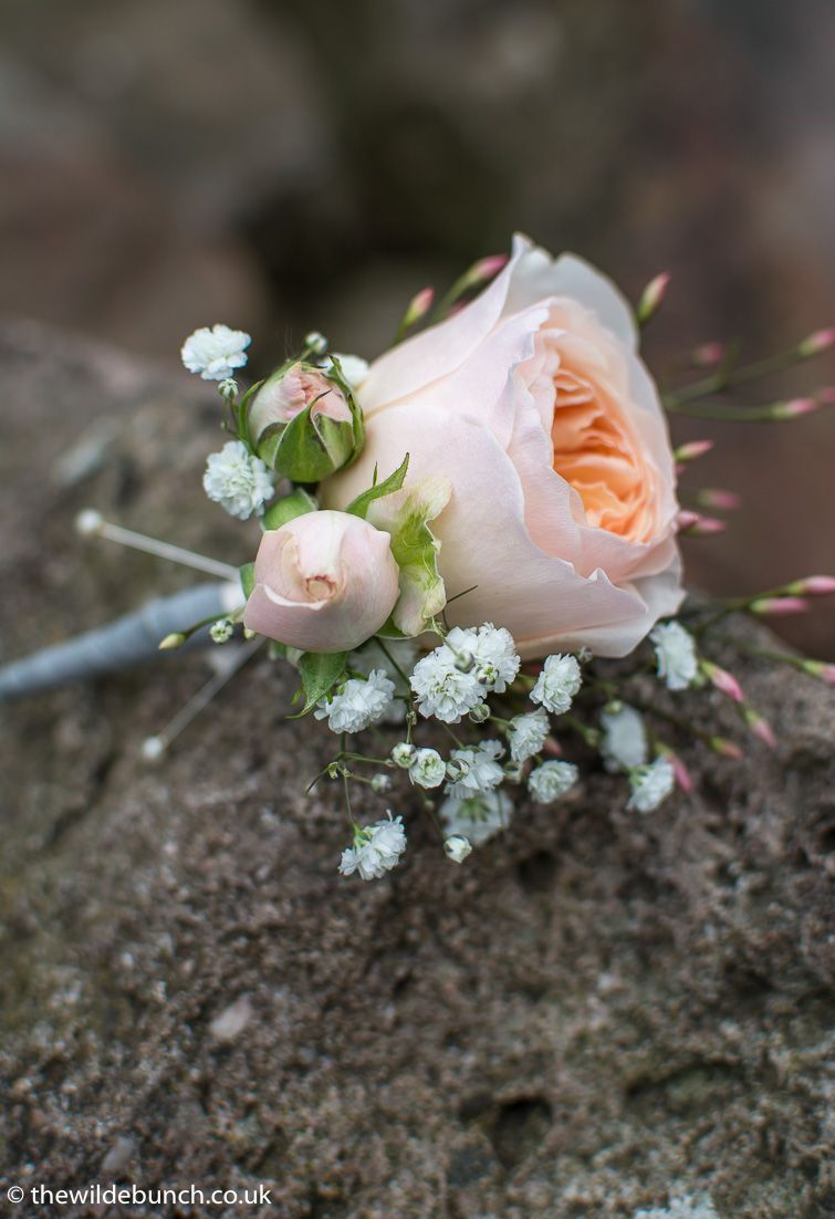Peach Garden Rose Boutonniere a classic peach rose buttonhole with spray rosebuds, jasmine and