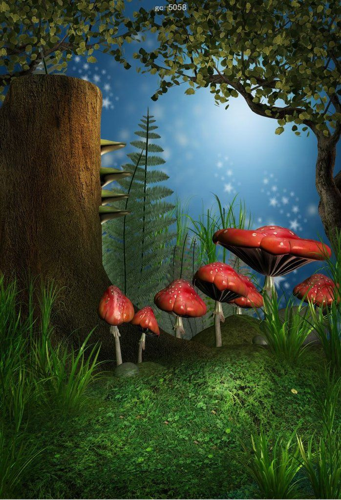 Fairy Tale Forest Photo Background Studio Backdrop in 2019