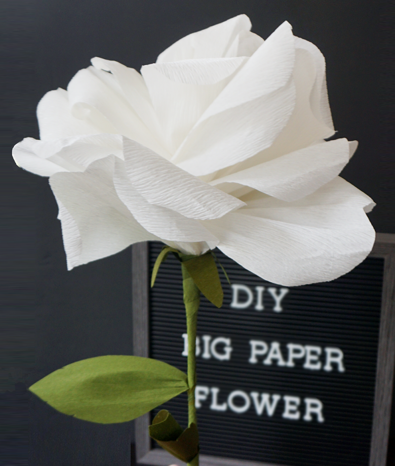 Supersize your wedding flora with this big crepe paper flower tutorial #bigpaperflowers Supersize your wedding flora with this big crepe paper flower tutorial | Offbeat Bride #bigpaperflowers
