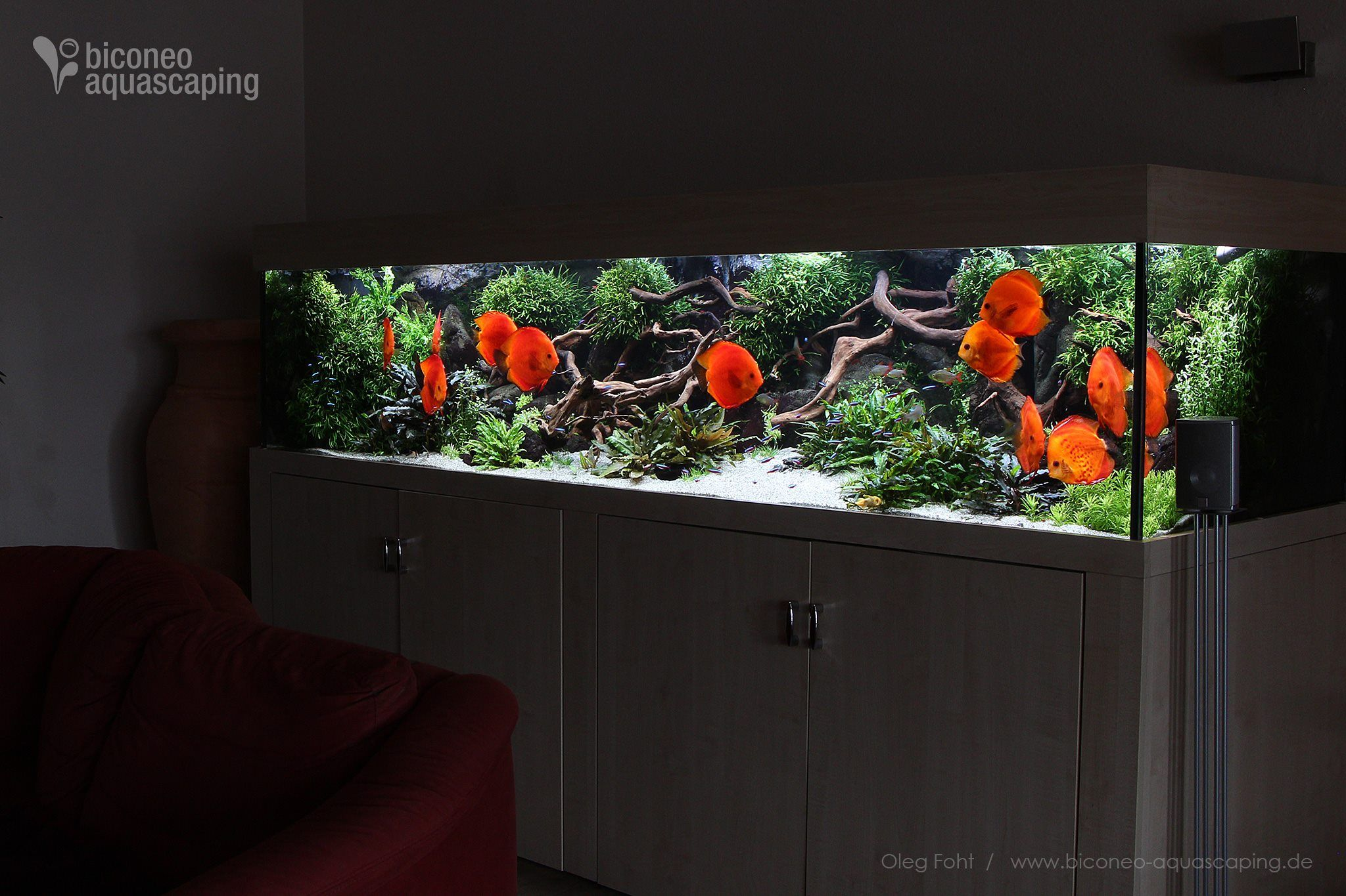 5d5d495455d678976805d47c647f978a Frais De Aquarium 450 Litres Des Idées