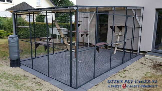 aluminium kattenren katzengehege zwinger katzenauslauf kattenboom pinterest katzen. Black Bedroom Furniture Sets. Home Design Ideas