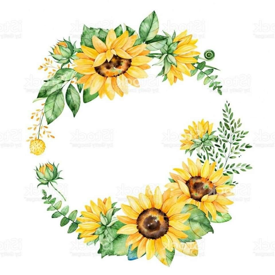 Pin By Hajar On إطارات Floral Wreath Watercolor Sunflower