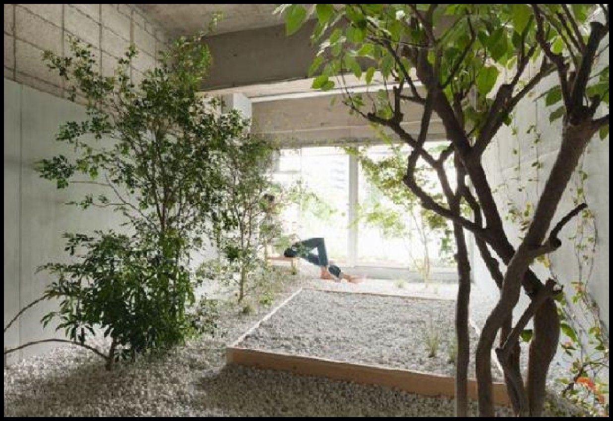 Charmant Outdoor Interior Fantastic Indoor Garden Design Inspiration Creating An Indoor  Garden Ideas