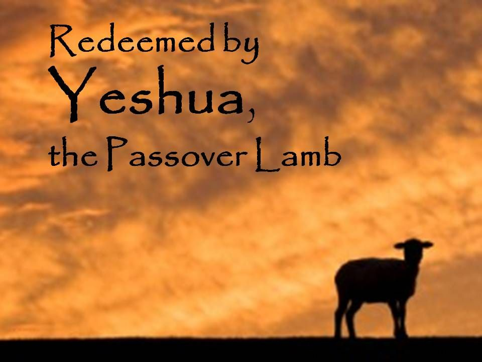 Yeshua Jesus Our Passover Lamb Easter Resurrection