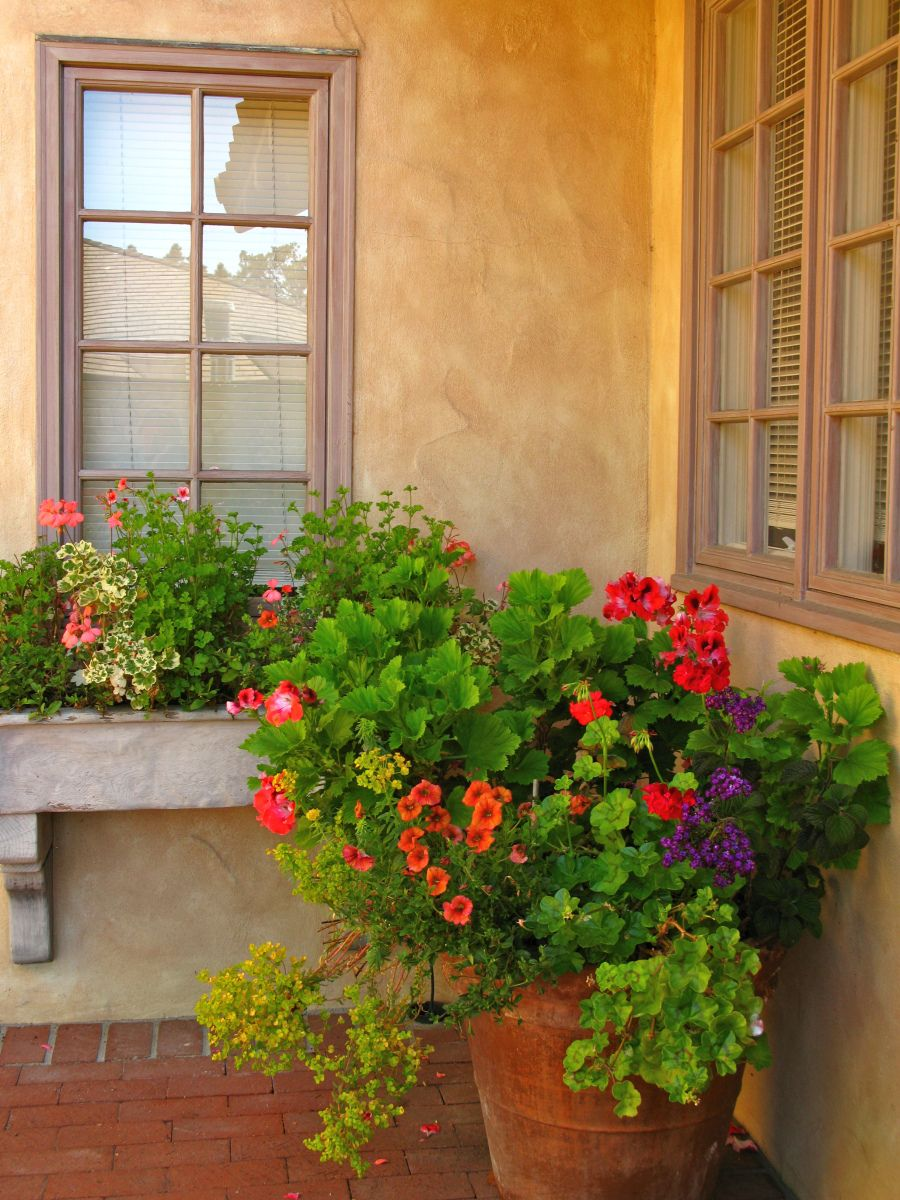 window box with container garden wonderful window boxes. Black Bedroom Furniture Sets. Home Design Ideas