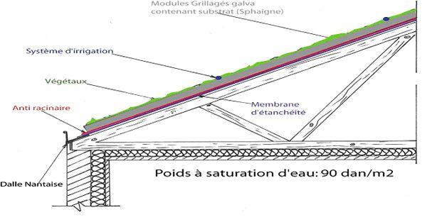 toit végétalisé technique de pose toiture végétalisé Terrasse
