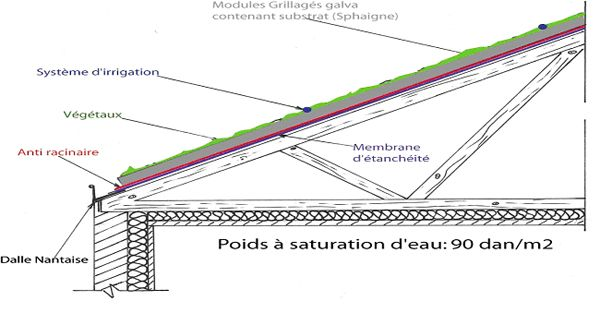 Toit v g talis technique de pose toiture v g talis toiture v g tale pinterest - Coupe toiture vegetalisee ...
