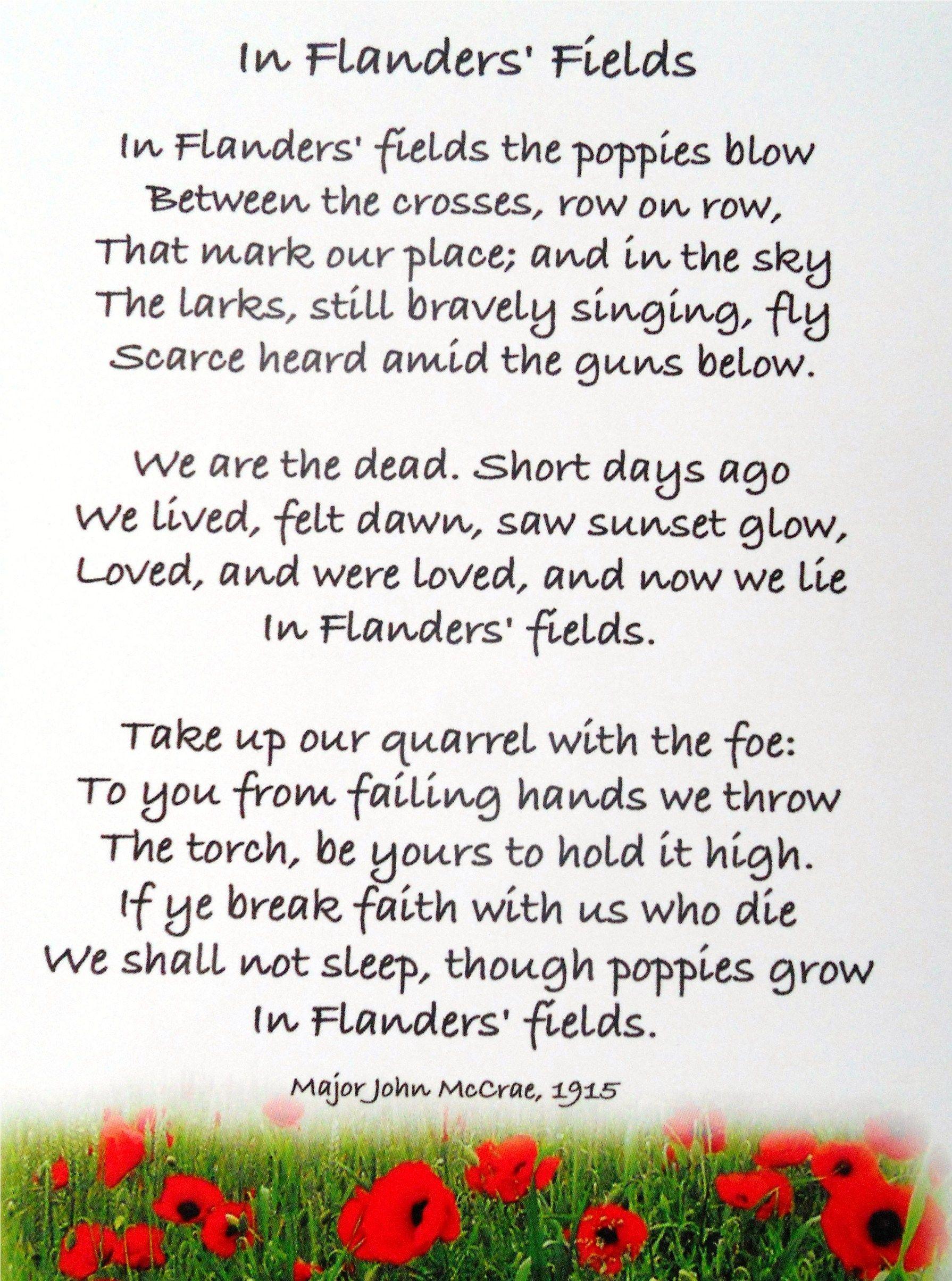 Image result for flanders field poem