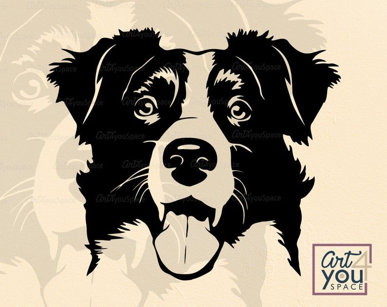 Cute Border Collie Svg Peeking Dog Svg File For Cricut Face Head Hound Breed Dxf Peekaboo Vector Clipart Png Download Shirt Svg In 2021 Cute Borders Border Collie Art Border Collie