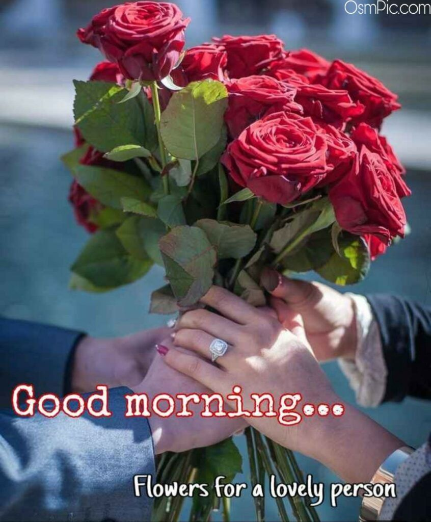 Good Morning Flowers For A Lovely Person Good Morning Flowers Good Morning Beautiful Flowers Good Morning Roses