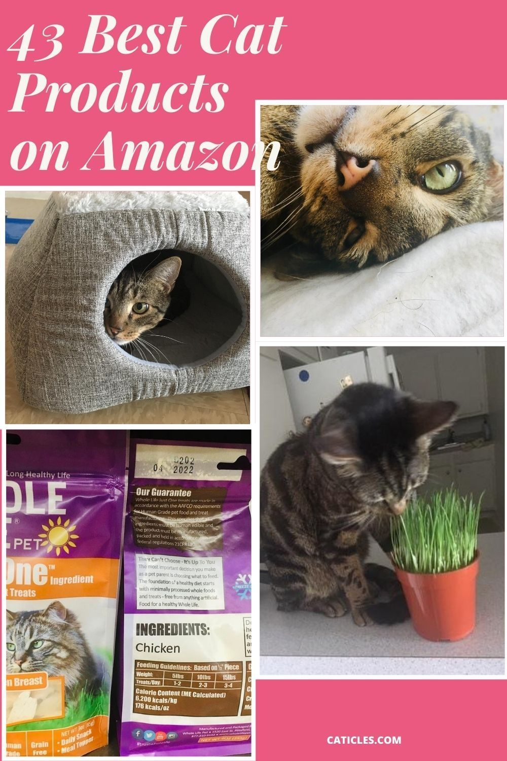43 Best Cat Products On Amazon 2020 Must Have Guide In 2020 Cool Cats Kitten Care Cat Care