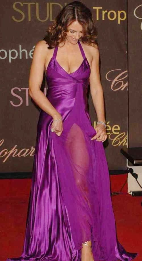 Elizabeth Hurley Pussy Show in See Through Dress
