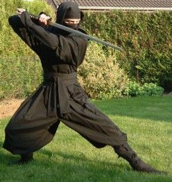 Ninjitsu is like Kung Fu. A sweeping term for a broad range of several arts.