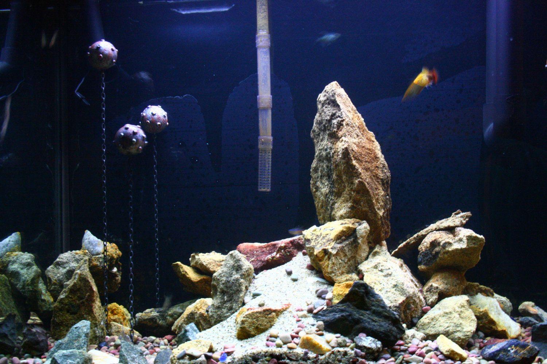 Aquarium fish tank decorations - Fish Tank Decoration Floating Aquarium Mine