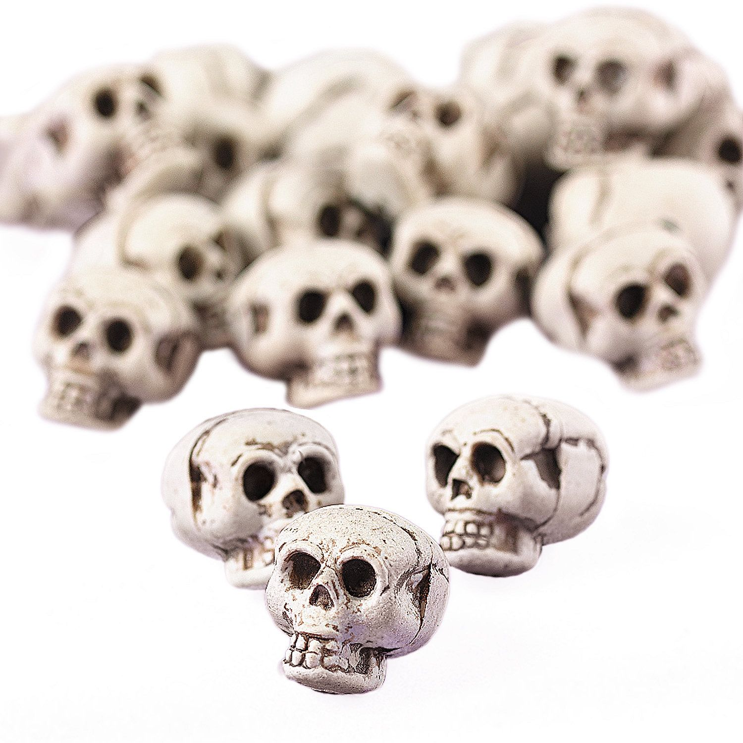 Mini Skulls - OrientalTrading.com - $6.25 for 24 pcs - this is exactly what I'd love to add to my mini animal skulls!