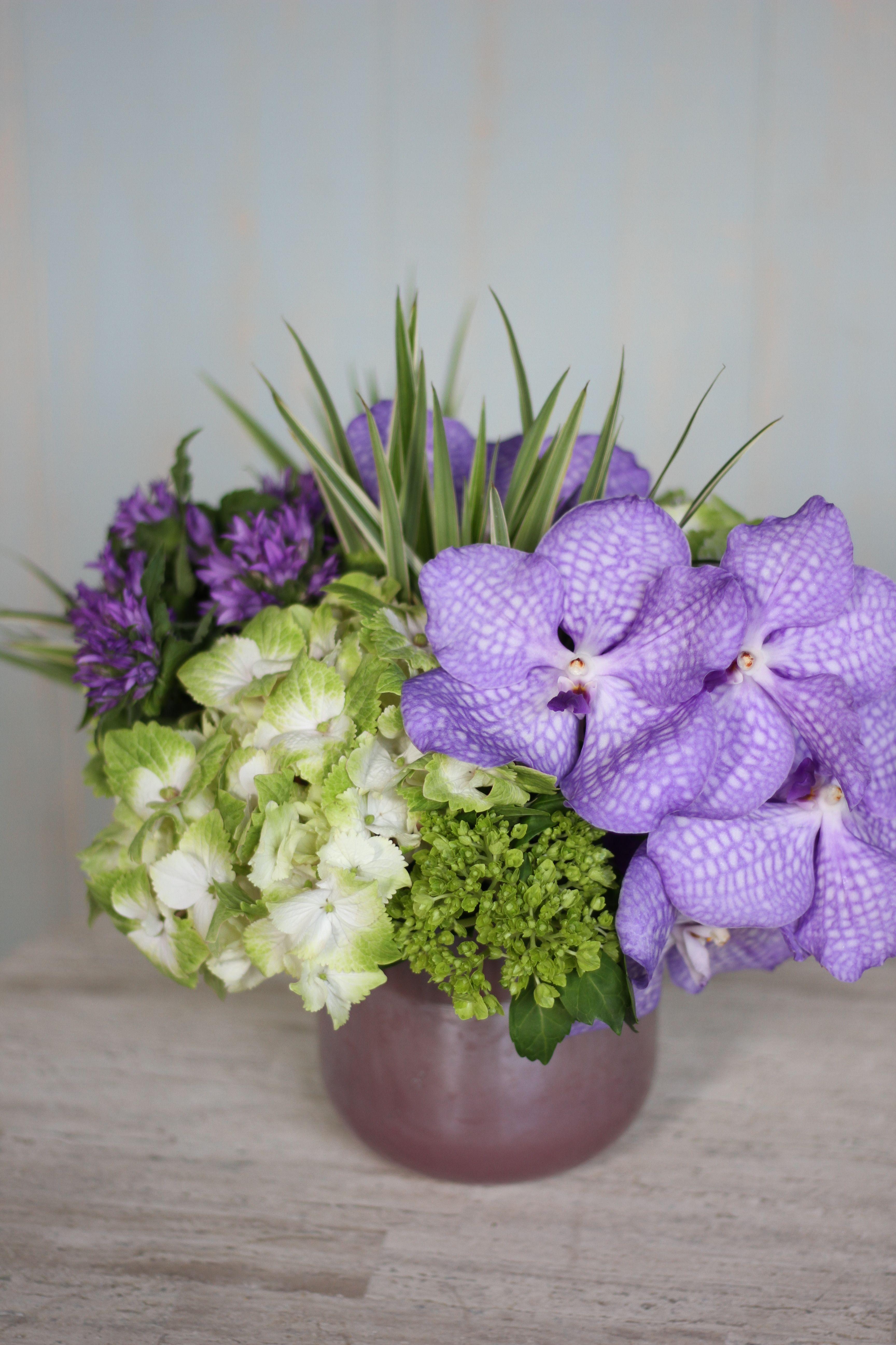 Vanda Orchid Blooms And Deep Purple Campanula Violet Garden By Winston Flowers Fresh Flowers Arrangements Flower Arrangements Unique Flower Arrangements