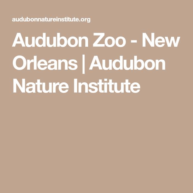 Audubon Zoo - New Orleans   Audubon Nature Institute