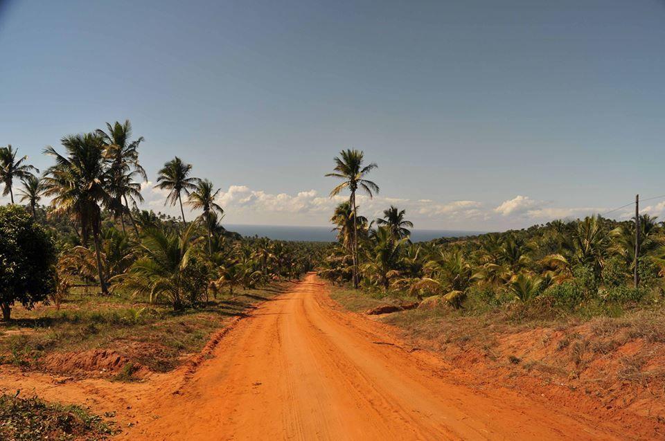 """É nas terras vermelhas de urronga. SAUDADES DA TERRA VERMELHA.....SO EM MOCAMBIQUE.até lhe sente o cheiro...... Aquela areia vermelhona (""""missava"""", não e?) tinha cheiro, um cheiro quente.Saudades, desta terra, molhada!"""