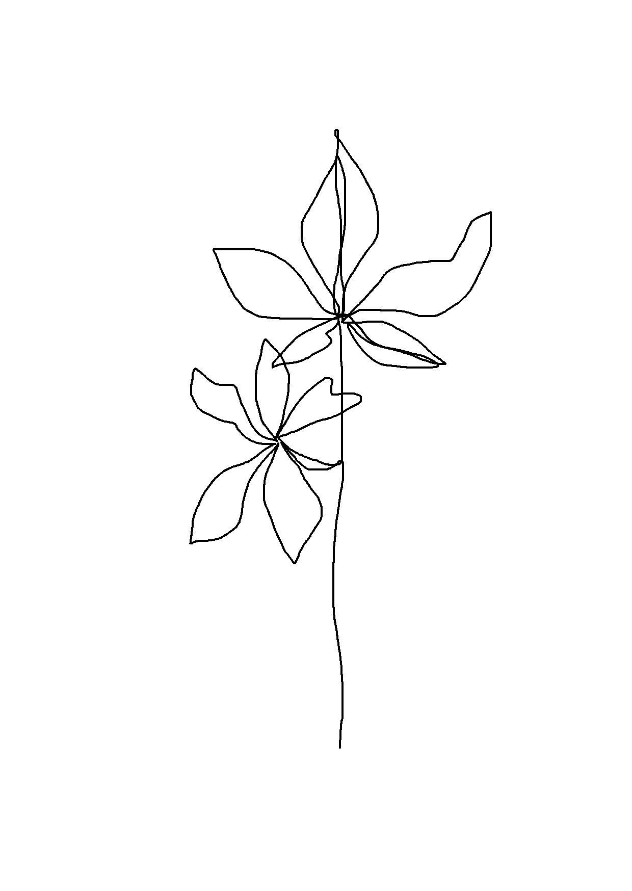 Single Line Drawing Flowers : One line minimal artwork plants and leaves minimalist