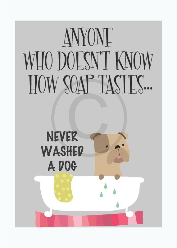 Dog Grooming Funny Dog Quote Art Print Typographic Print