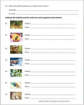 Habitat And Niche Practice Problem Worksheet For Ecology Unit Ecology Unit Ecology Habitats