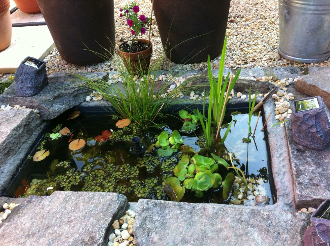 Mörtelwanne Viereckig Versenkt Pond Stuff Pond