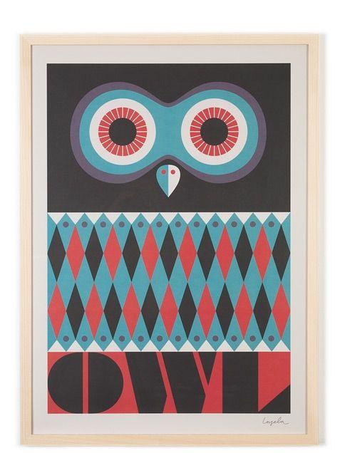 Owl Poster (50x70cm)