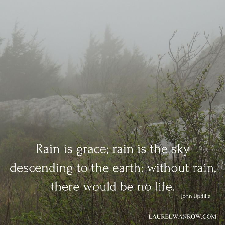 Nature quotes about rain by john updike rain quotes