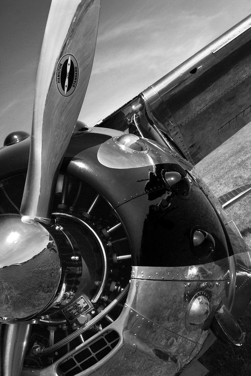 Cessna 195 airplane. Black and white aviation photography.