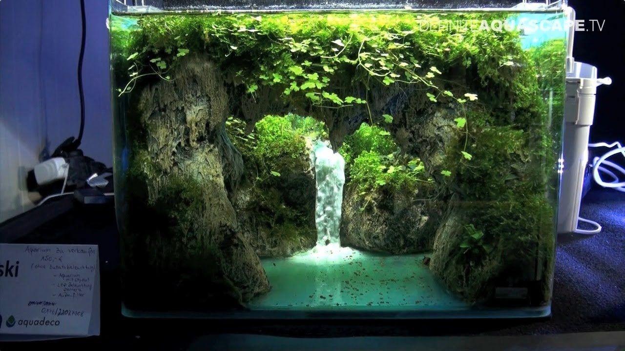 The Art of the Planted Aquarium 2017 - Nano tanks 1-3 ...
