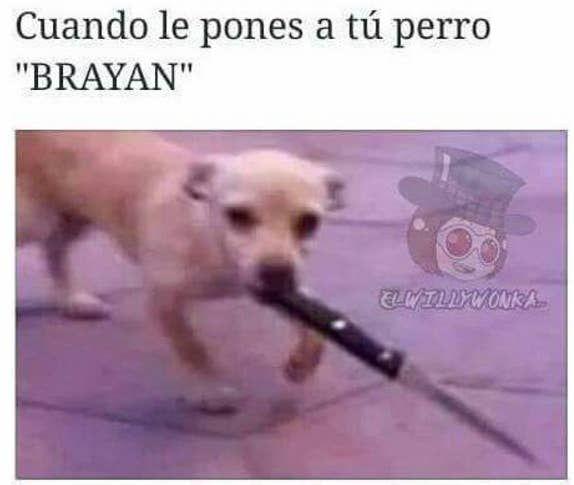 """14 Chistes malvados sobre el nombre """"El Brayan"""""""