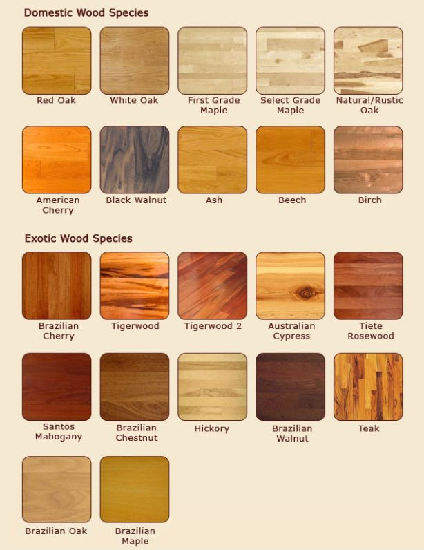 american wood types - Google Search