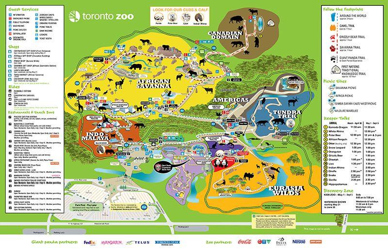 Toronto Zoo   Toronto Zoo Map   Humans that Actually Care ...