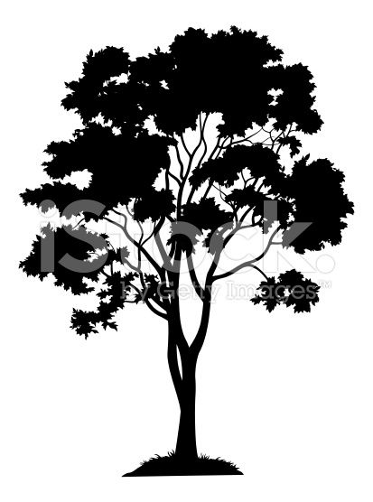 31++ Tree silhouette clipart black and white information