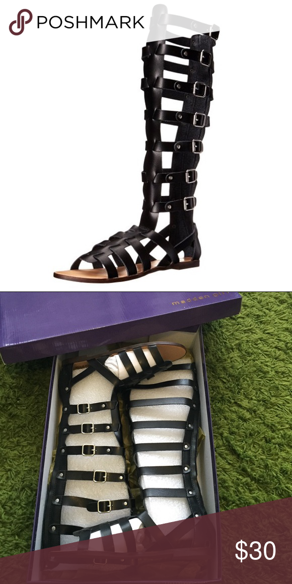 ✨BNIB✨ Steve Madden Penna Tall Gladiator Sandal 8 Brand new in box Steve Madden Penna Tall Gladiator Sandals size 8. Price listed as half off of the original costs. No trades. Please feel free to ask any questions ! Steve Madden Shoes Sandals