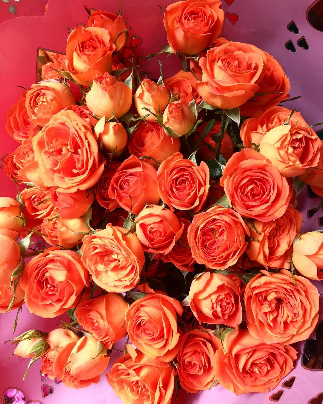 Just bought these beauties to brighten my Monday... #roses #flowers ...