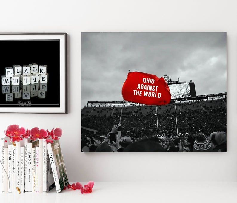 Ohio State Buckeyes, Ohio against the world, framed wall art, Buckeyes, Ohio State Stadium, ohio state. Ohio state Buckeye football